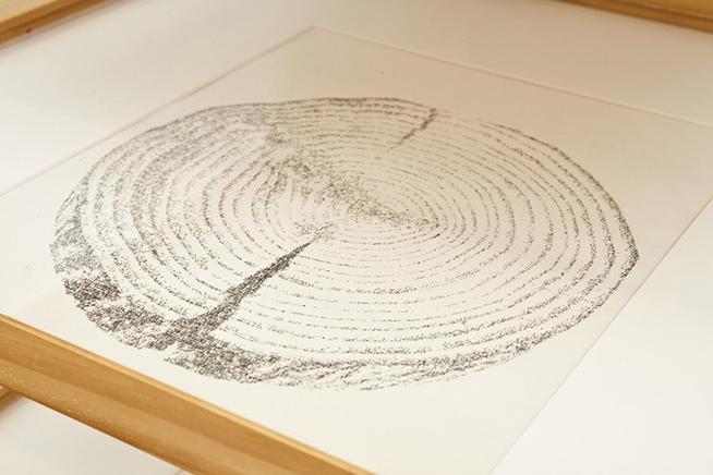SINERGIA IDibujos por impresión tipográfica de texto intermediada por papel carbón sobre papel170 x 52 x 52 cm2010