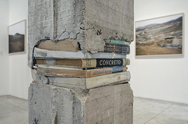 PILARESDetalleConcreto reforzado, libros tallados y fotografías laminadasMedidas variables2014